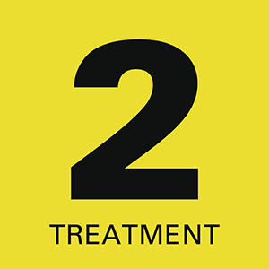 2 Treatment